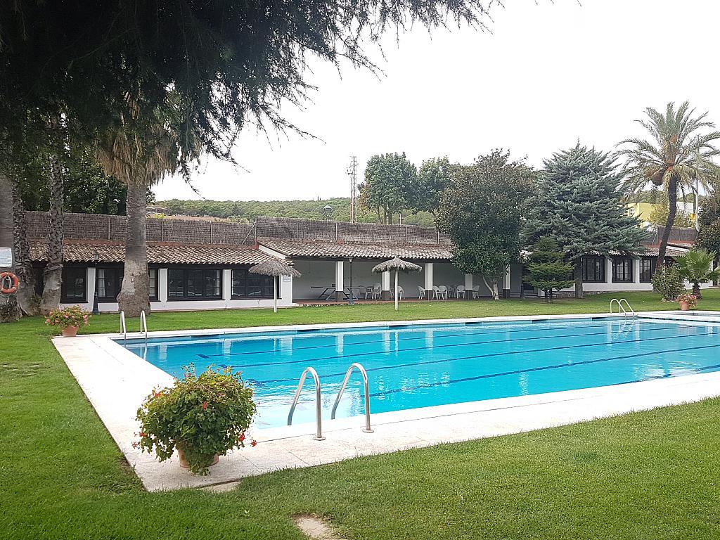 Jardín - Casa adosada en alquiler en pasaje Esparragueres, Cabrils - 327647659