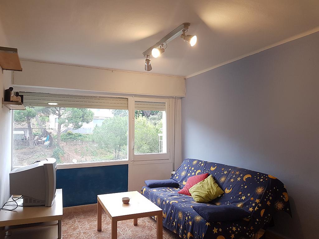 Salón - Apartamento en alquiler en calle Puig de Popa, Calella - 333699295