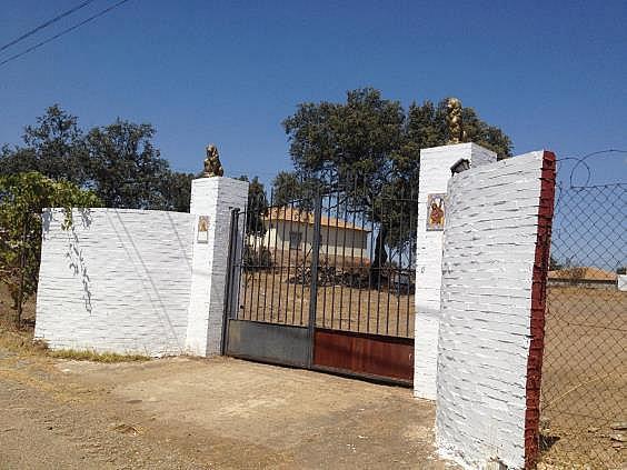 Finca rústica en alquiler en calle Dehesa Las Minas, Castilblanco de los Arroyos - 307062244
