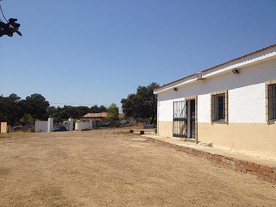 Finca rústica en alquiler en calle Dehesa Las Minas, Castilblanco de los Arroyos - 307062271