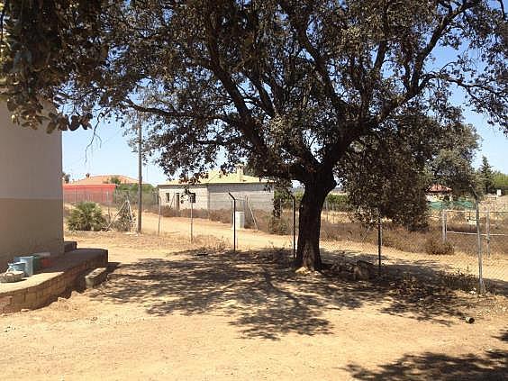 Finca rústica en alquiler en calle Dehesa Las Minas, Castilblanco de los Arroyos - 307062277