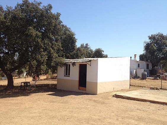 Finca rústica en alquiler en calle Dehesa Las Minas, Castilblanco de los Arroyos - 307062283