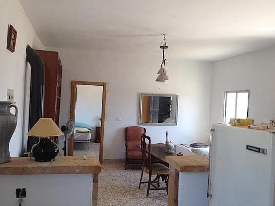 Finca rústica en alquiler en calle Dehesa Las Minas, Castilblanco de los Arroyos - 307062286