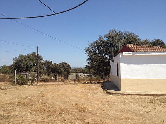 Finca rústica en alquiler en calle Dehesa Las Minas, Castilblanco de los Arroyos - 307062310
