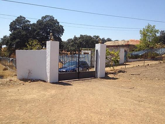 Finca rústica en alquiler en calle Dehesa Las Minas, Castilblanco de los Arroyos - 307062319