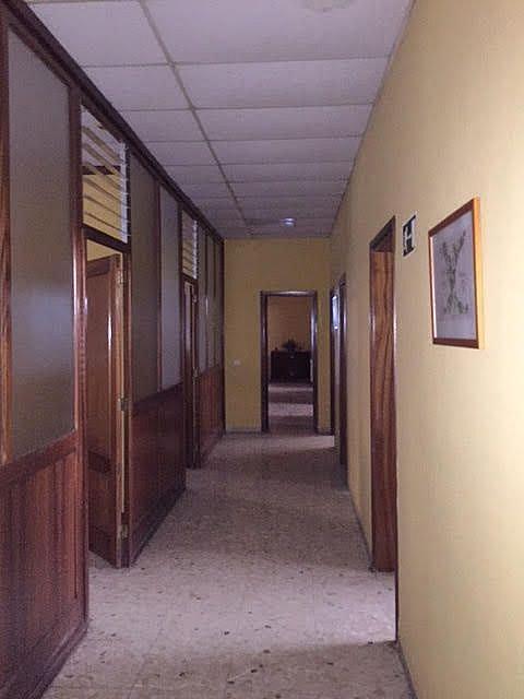 Imagen sin descripción - Nave en alquiler en San Cristóbal de La Laguna - 284861979