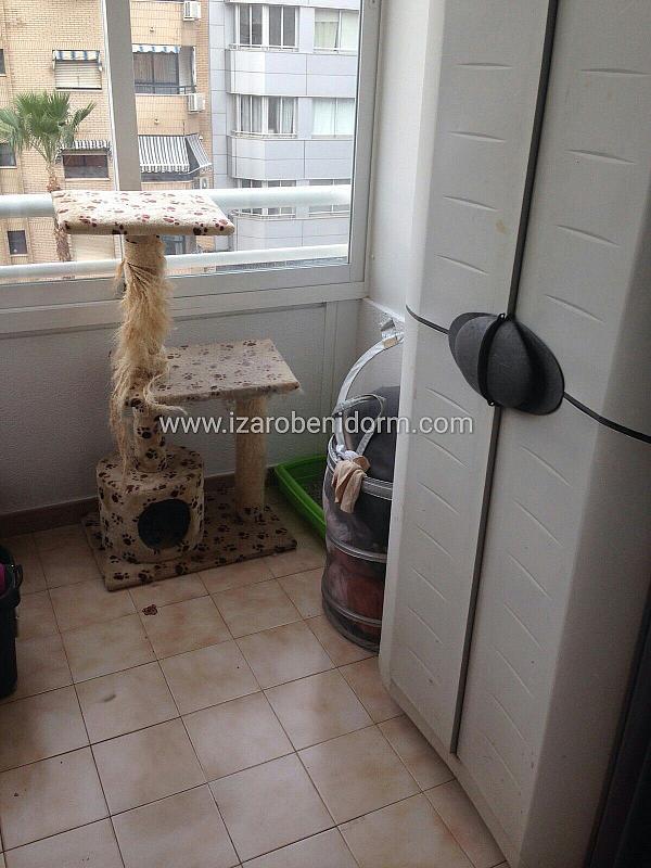 Imagen sin descripción - Apartamento en venta en Benidorm - 284861471