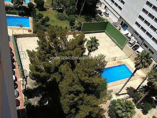 Imagen sin descripción - Apartamento en venta en Benidorm - 284862107
