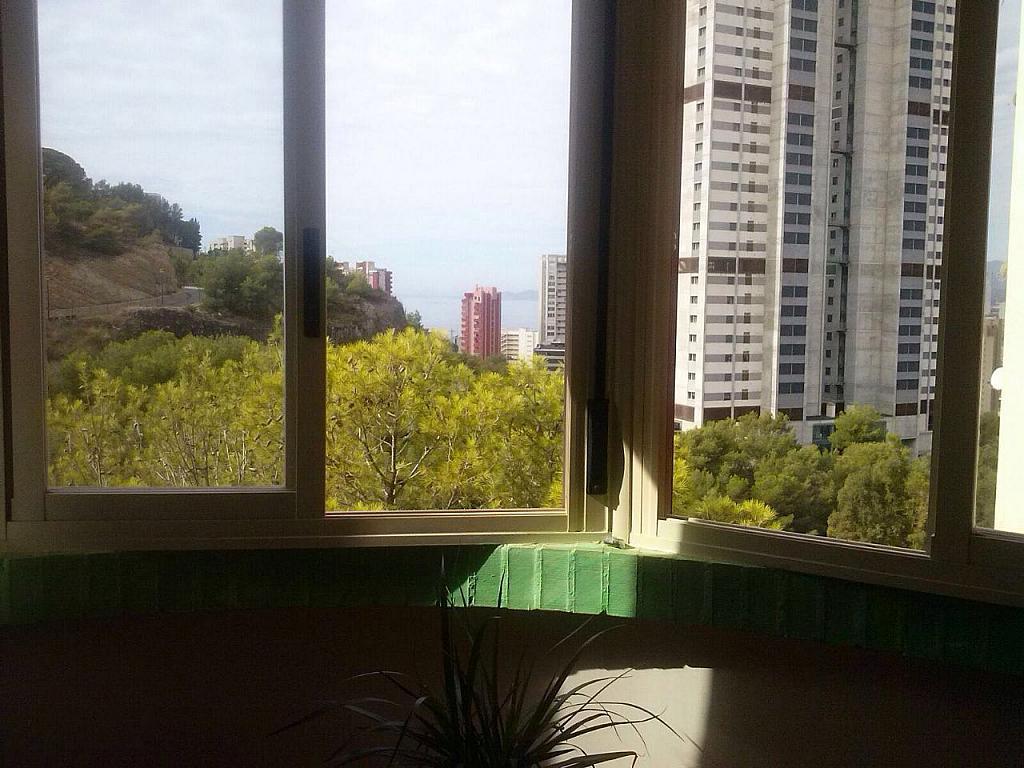 Imagen sin descripción - Apartamento en venta en Benidorm - 284862398