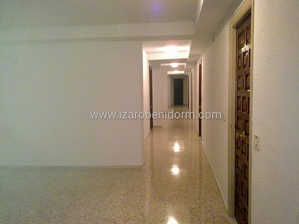 Imagen sin descripción - Apartamento en venta en Benidorm - 284863796