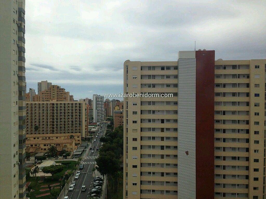 Imagen sin descripción - Apartamento en venta en Benidorm - 285324258