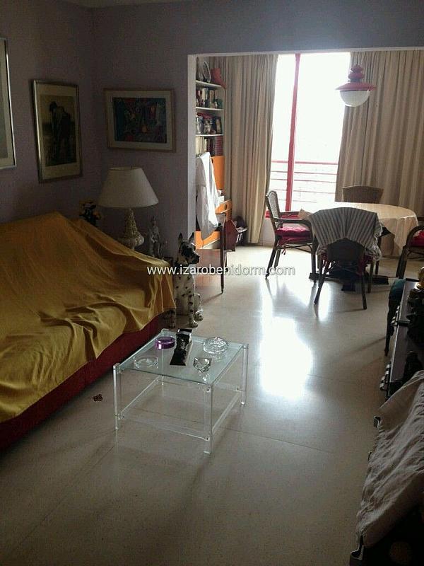 Imagen sin descripción - Apartamento en venta en Benidorm - 285324273
