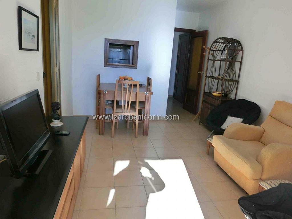Imagen sin descripción - Apartamento en venta en Benidorm - 285324624