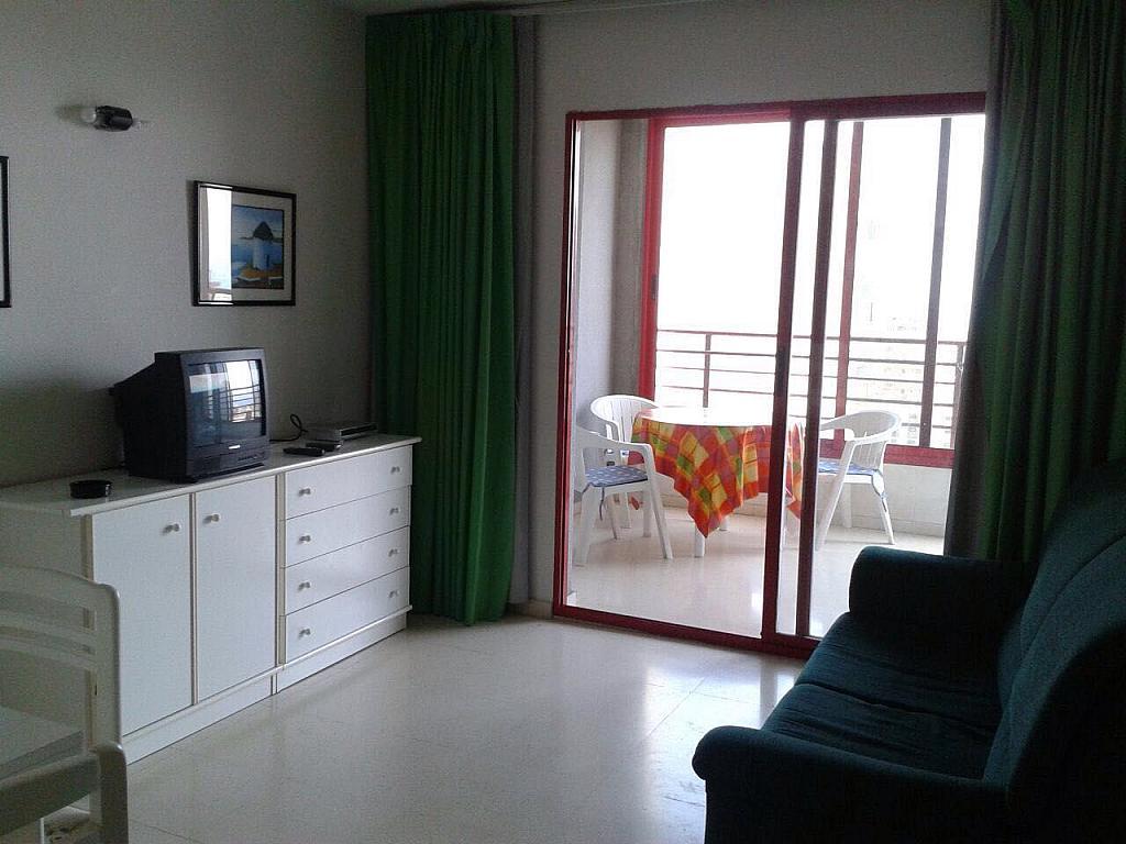 Imagen sin descripción - Apartamento en venta en Benidorm - 285712924