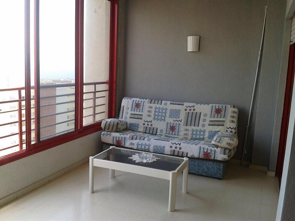 Imagen sin descripción - Apartamento en venta en Benidorm - 285712927