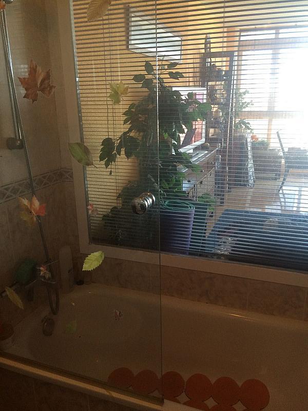 Imagen sin descripción - Apartamento en venta en Benidorm - 306715752