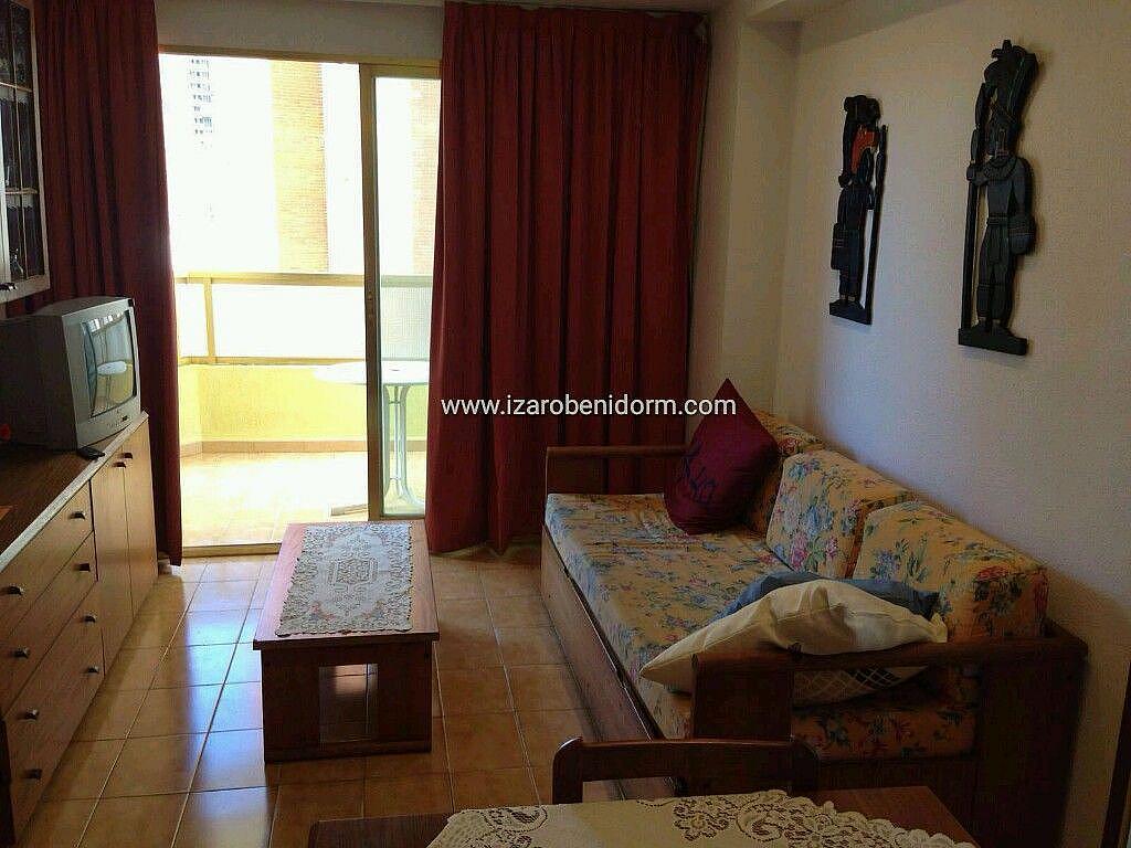 Imagen sin descripción - Apartamento en alquiler en Benidorm - 323617158