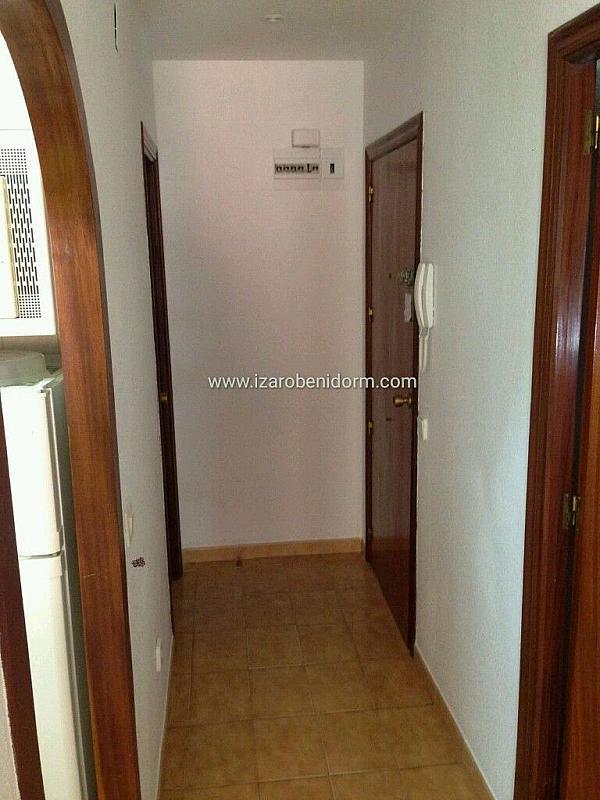 Imagen sin descripción - Apartamento en alquiler en Benidorm - 323617164