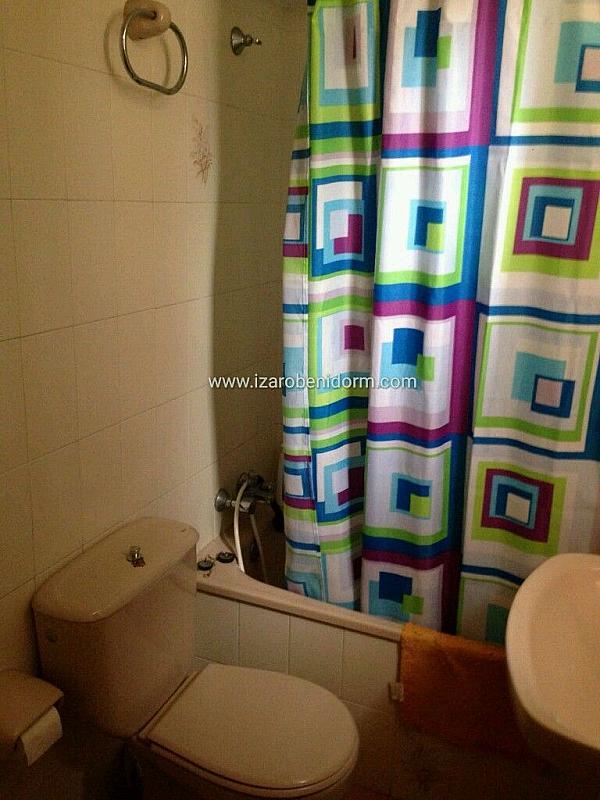 Imagen sin descripción - Apartamento en alquiler en Benidorm - 323617167