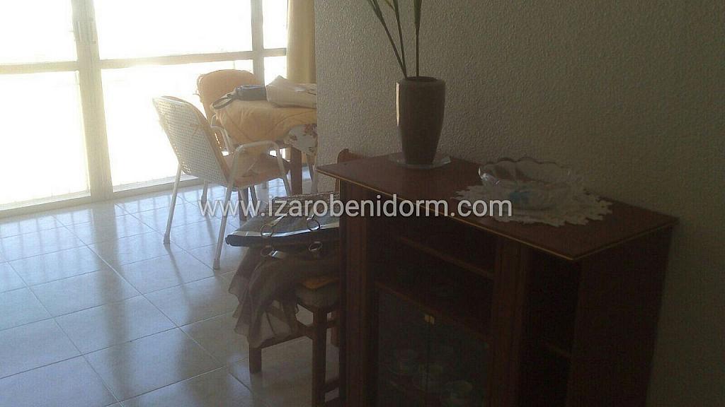Imagen sin descripción - Apartamento en venta en Benidorm - 323617200