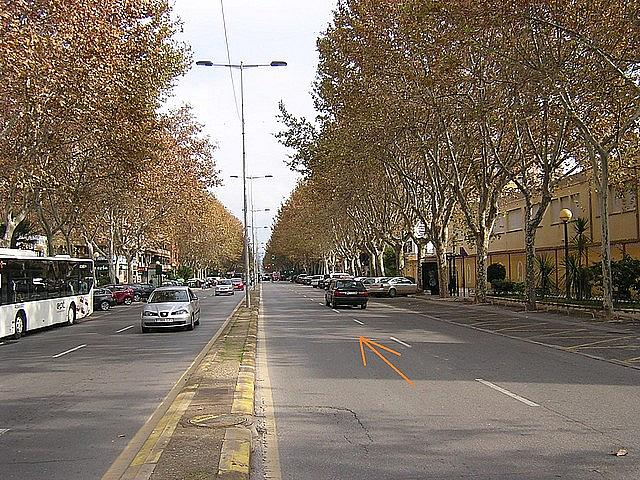 Piso en alquiler en calle Alfonso, Casco antiguo en Cartagena - 296218086