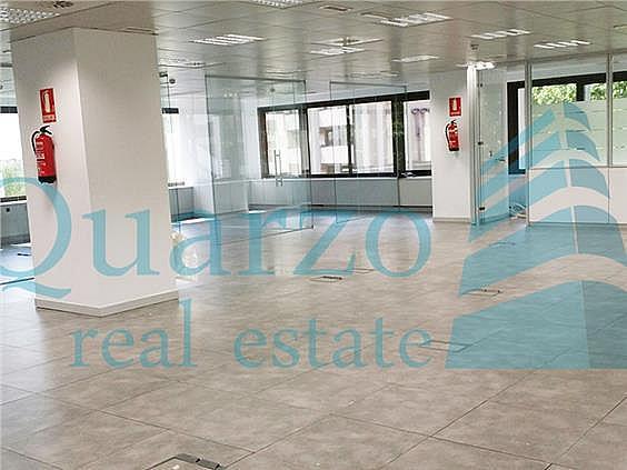Oficina en alquiler en Castilla en Madrid - 294723630