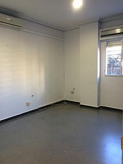 Oficina - Oficina en alquiler en Macarena en Sevilla - 288291035