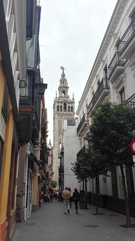 Piso - Piso en alquiler en Casco Antiguo en Sevilla - 288291770