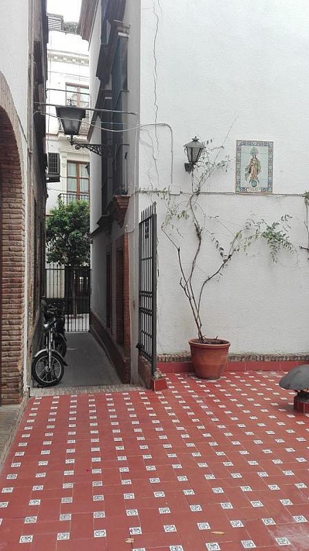 Piso - Piso en alquiler en Casco Antiguo en Sevilla - 288291851