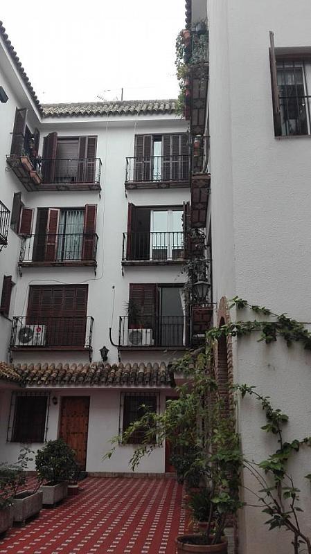 Piso - Piso en alquiler en Casco Antiguo en Sevilla - 288291854
