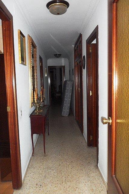 Piso - Piso en alquiler en Triana en Sevilla - 288292733