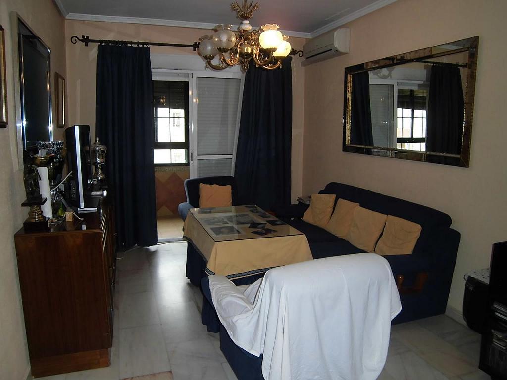 Piso - Piso en alquiler en Distrito Norte en Sevilla - 303183581