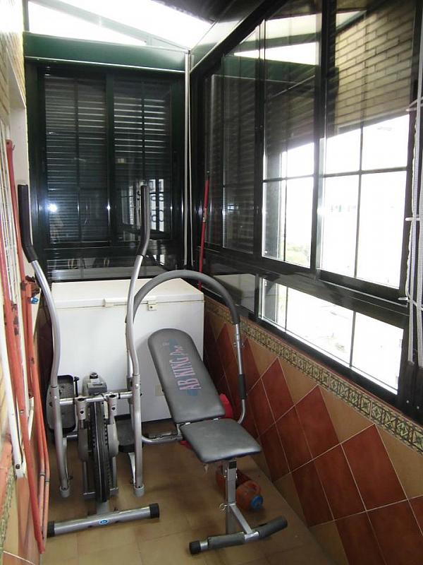 Piso - Piso en alquiler en Distrito Norte en Sevilla - 303183587