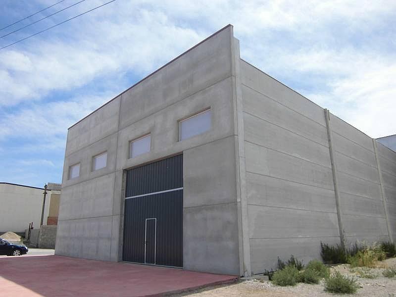 Foto - Nave industrial en alquiler en calle Cervera, Cervera - 310593688