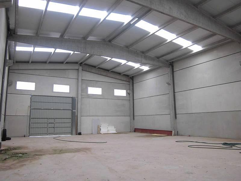 Foto - Nave industrial en alquiler en calle Cervera, Cervera - 310593700