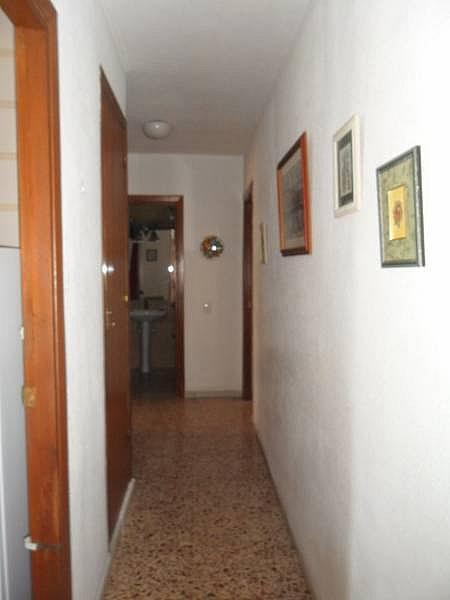 Foto - Piso en alquiler en calle Zapillo, Zapillo en Almería - 332165476