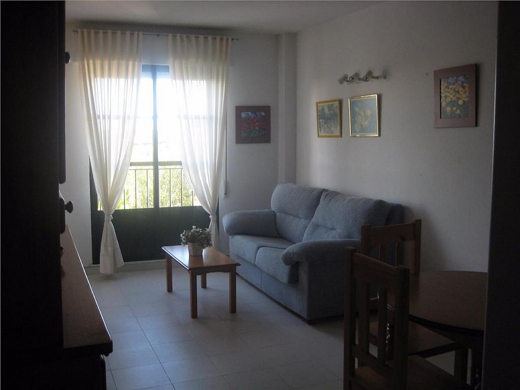 Apartamento en alquiler en Chiclana de la Frontera - 355450824