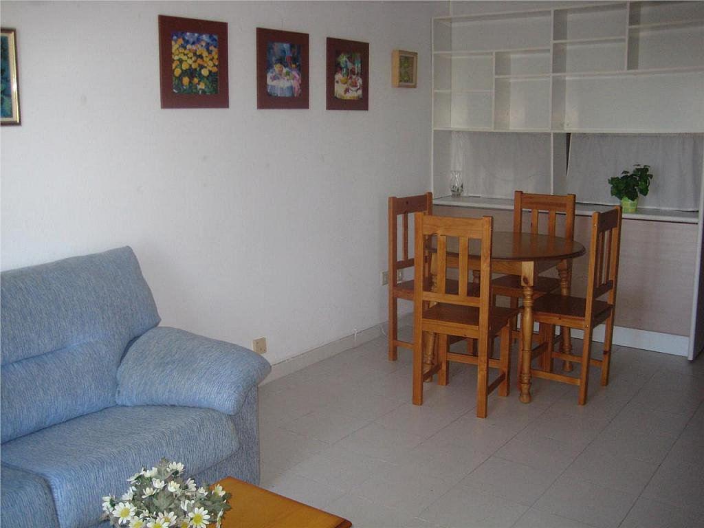Apartamento en alquiler en Chiclana de la Frontera - 355450830
