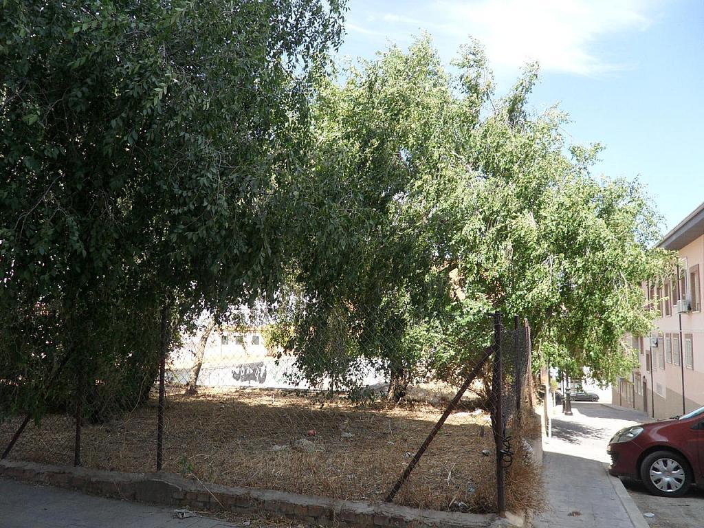 Local - Local comercial en alquiler en calle San Javier, Molar (El) - 305986184