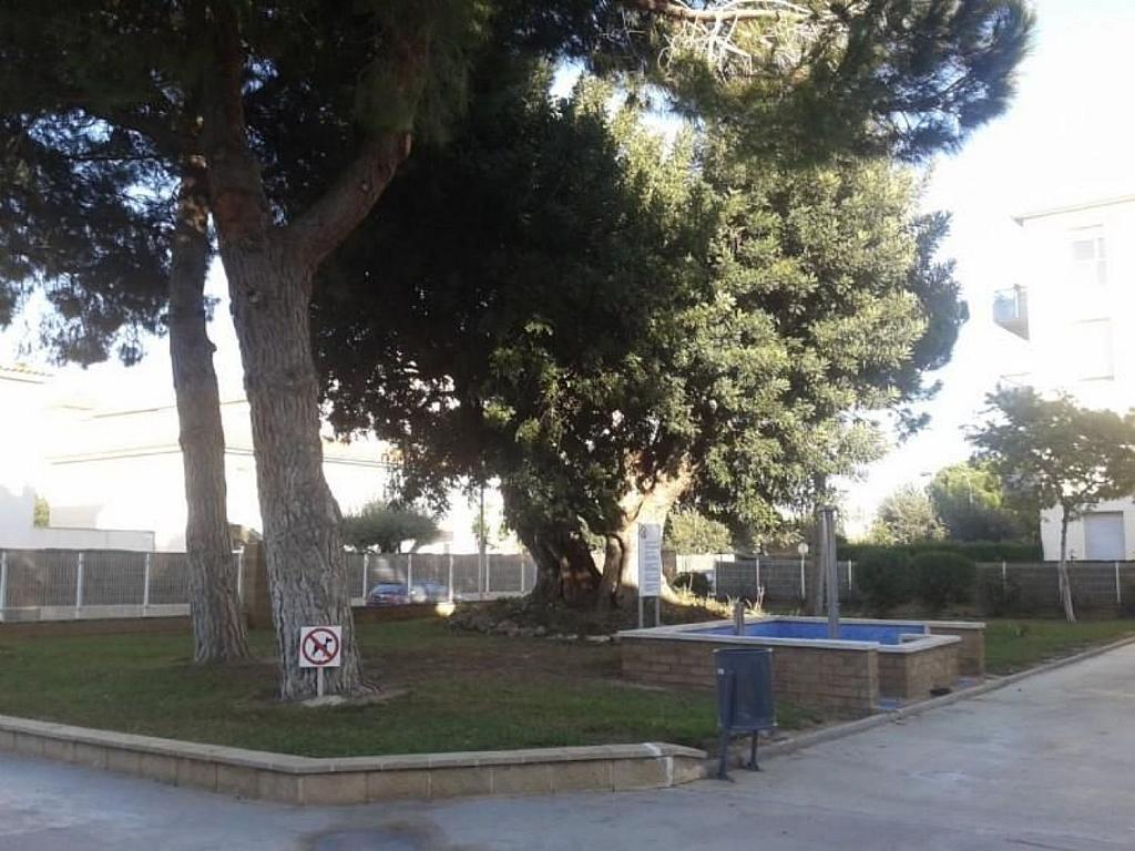 Piso en alquiler en calle Lluís Millet, Cambrils - 342845982