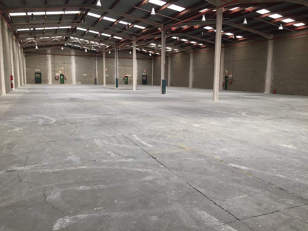 Vistas - Nave industrial en alquiler en calle Font del Radium, Granollers - 322071810
