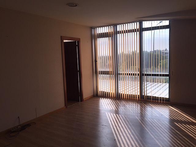 Nave industrial en alquiler en vía Autopista, Campoamor en Sabadell - 326267630