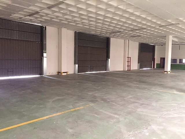 Nave industrial en alquiler en vía Autopista, Campoamor en Sabadell - 326267674