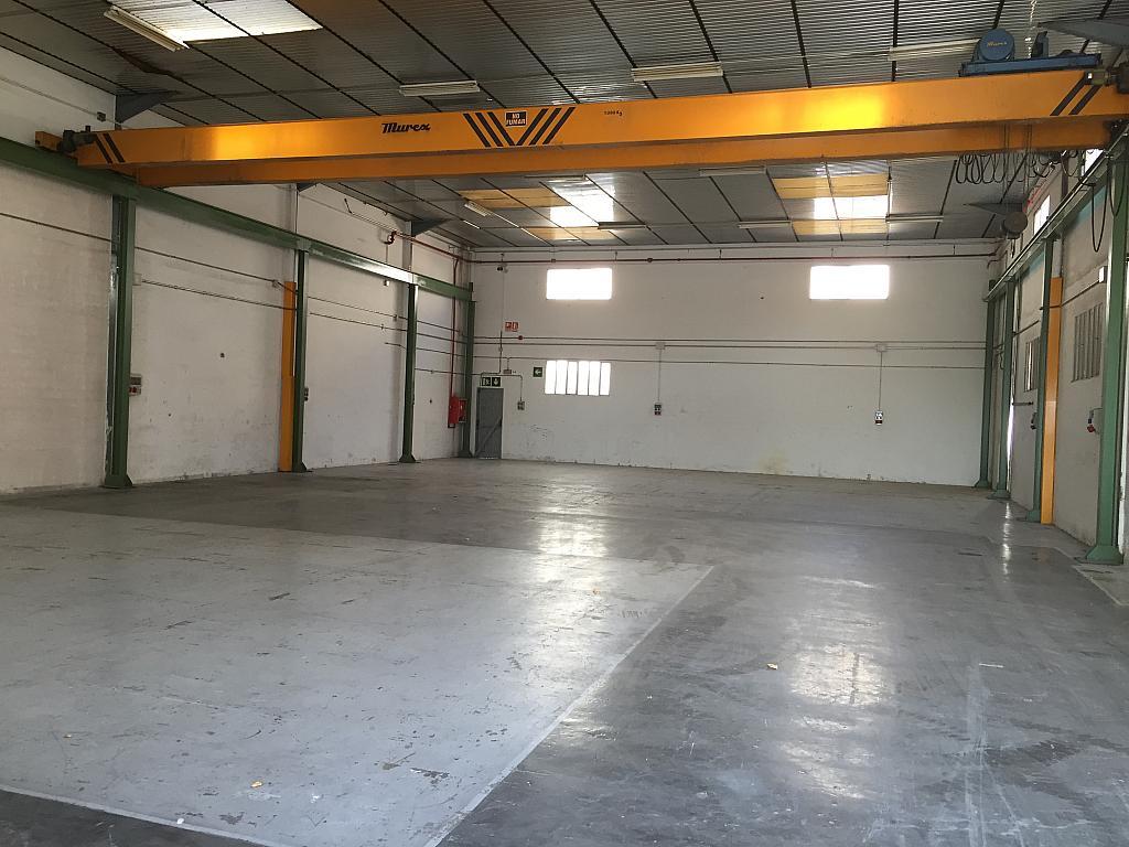 Nave industrial en alquiler en calle Ripolles, Santa Perpètua de Mogoda - 327580626