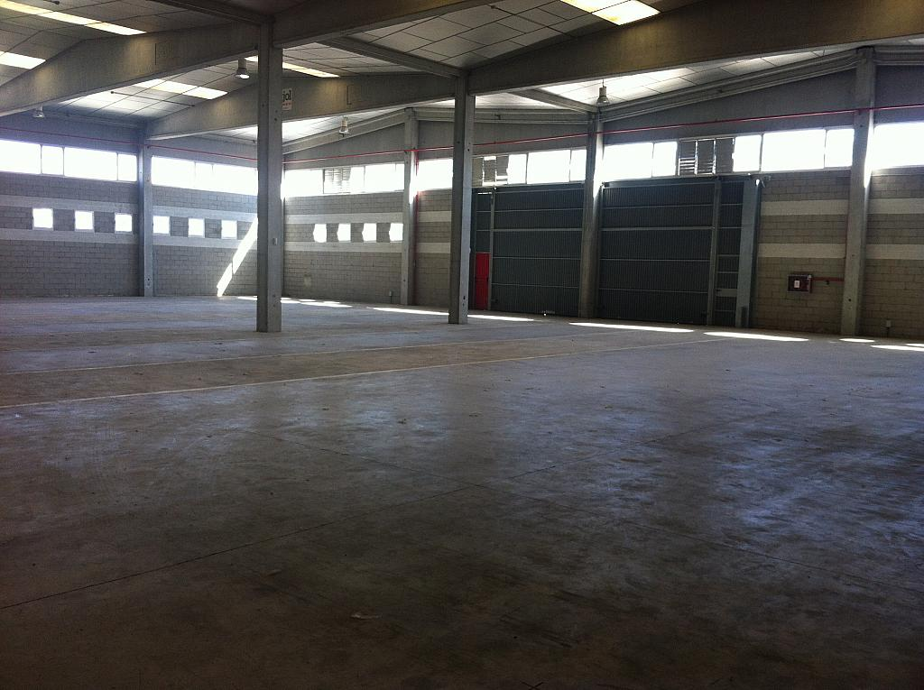 Nave industrial en alquiler en calle Octave Lecante, Poligon Industrial de Can Margarola en Mollet del Vallès - 331314773