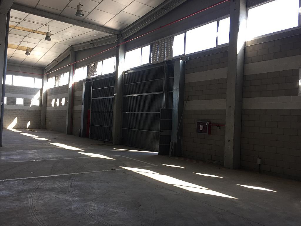 Nave industrial en alquiler en calle Octave Lecante, Poligon Industrial de Can Margarola en Mollet del Vallès - 331315150
