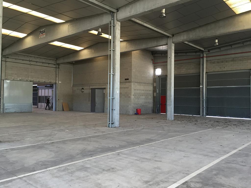 Nave industrial en alquiler en calle Octave Lecante, Poligon Industrial de Can Margarola en Mollet del Vallès - 331315172