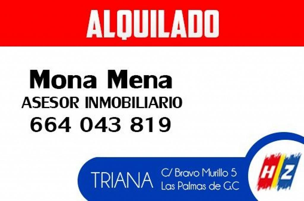 Local comercial en alquiler en calle Doctor Grau Bassas, Santa Catalina - Canteras en Palmas de Gran Canaria(Las) - 377232752