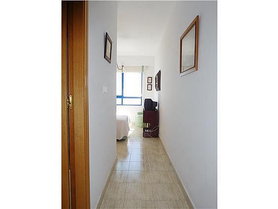 Piso en alquiler en calle Magraner, Playa Mucha Vista en Campello (el) - 328144185