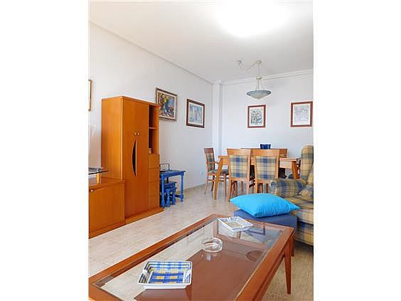 Piso en alquiler en calle Magraner, Playa Mucha Vista en Campello (el) - 328144275